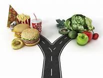 diet vs lifestyle