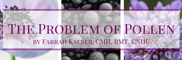 allergy pollen