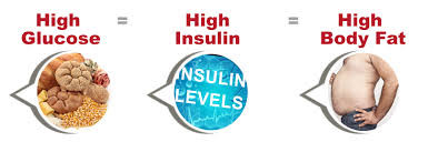 insulin body fat
