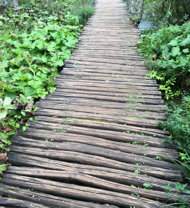 the wooden boardwalk at Plitvice Lakes National Park, Croatia