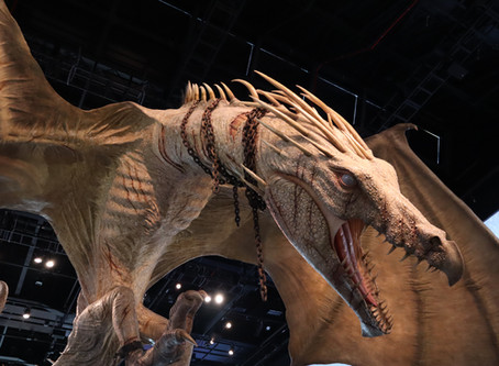 What to Expect from the Harry Potter Studio Tour London