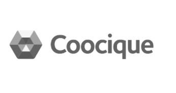 cocique_edited.jpg