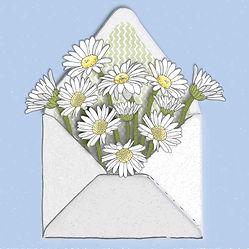Sq daisy spot.jpg