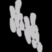 Cartwheel Shapes-135.png