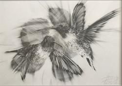 """Ruby Throated Hummingbirds"""