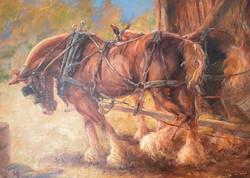 """Oil- """"Horse Power"""""""