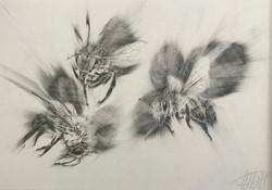 """Three Bees"""
