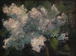 "Oil- ""White Lilacs"""