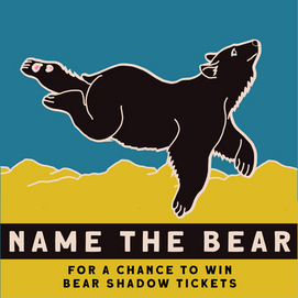 name the bear-22.png