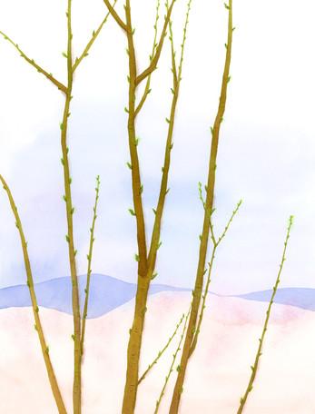 個展「タビノサキ 2015、東北旅」