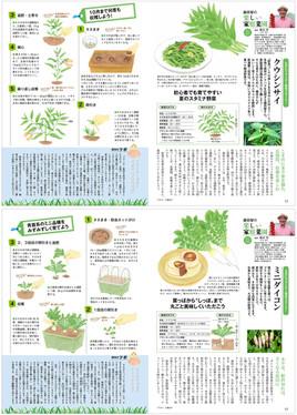 「藤井智の楽しい家庭菜園」連載挿絵
