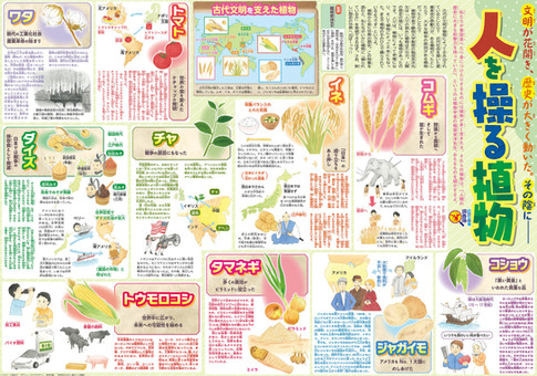 『読売KODOMO新聞』2019/8/8号