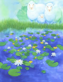 「花に聞くvol.16 睡蓮」