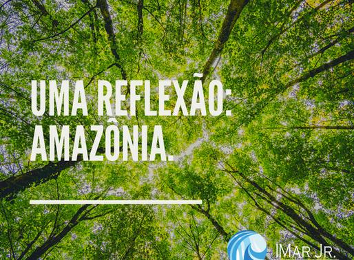 O que a Amazônia interfere no seu dia-a-dia?