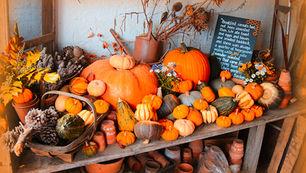 Autumn in National Trust