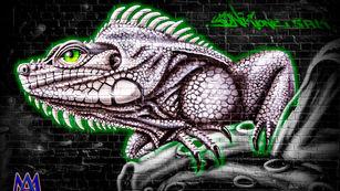 upfest lizard