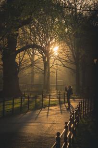 Central Park lone photographer