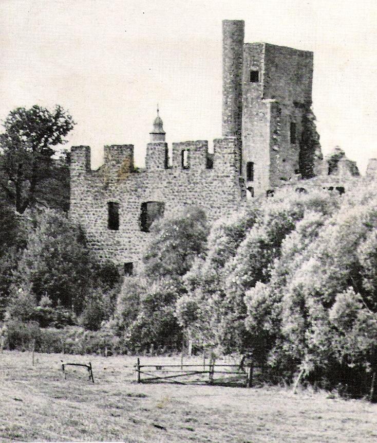 Burg-Beilstein-März.jpg