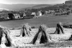 Erntezeit - Kornhausten