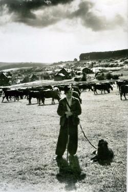 Beilstein1953005.jpg