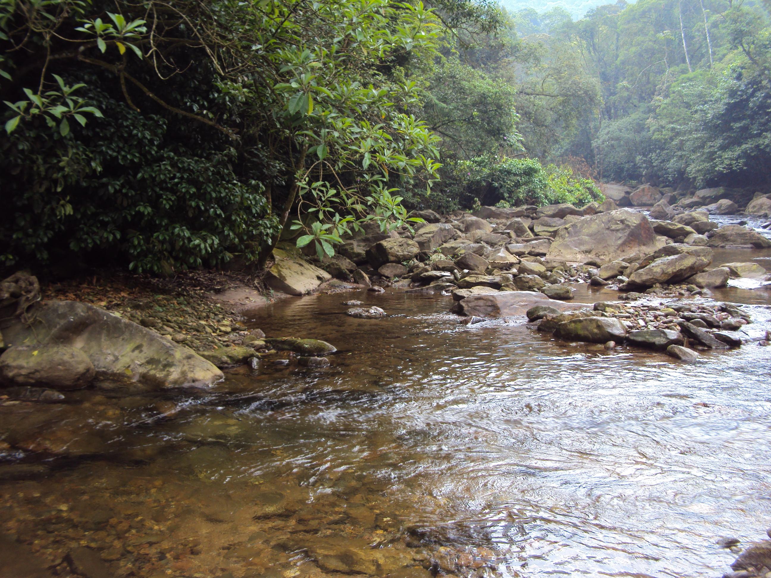 Vale das cachoeiras novembro 2014 009.jpg