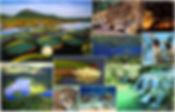 pantanal08.jpg