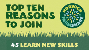 Top Ten Reasons to join Norwich FarmShare – #5 Learn New Skills