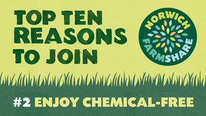Top Ten Reasons to join Norwich FarmShare – #2 Enjoy Chemical-free