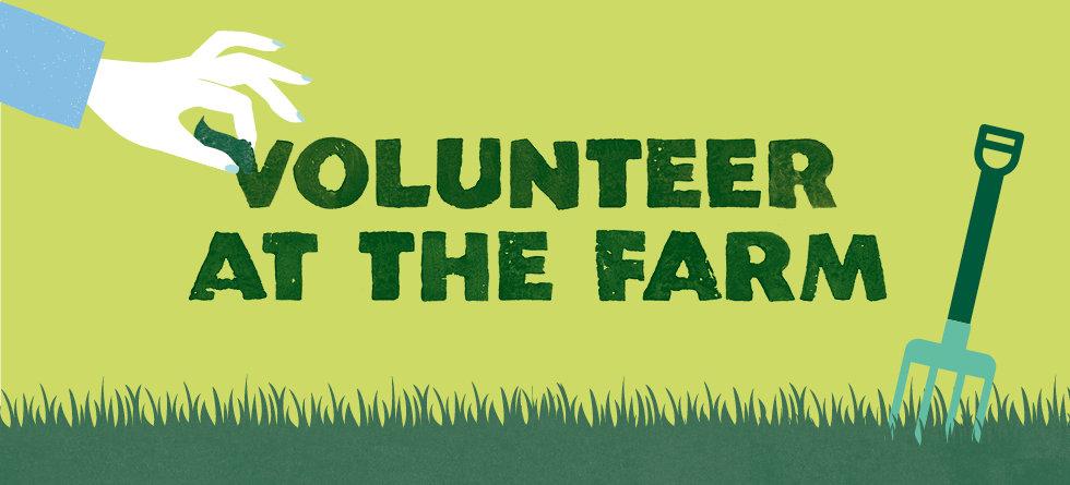 Header images Volunteer at farm.jpg