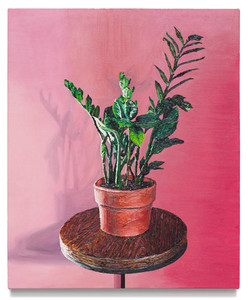 Plant in terracotta pot, 2019 Oil on canvas 28.5 x 23.5