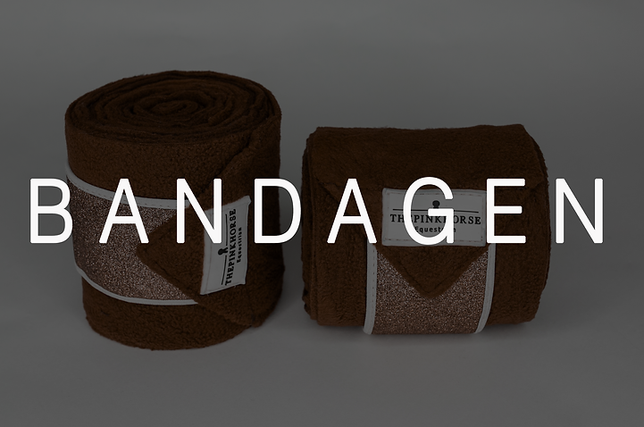 BandagenWebsite.png