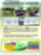 golf-fy2020-one-pager.png