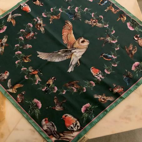 Blog 25 - Thistles & Robins