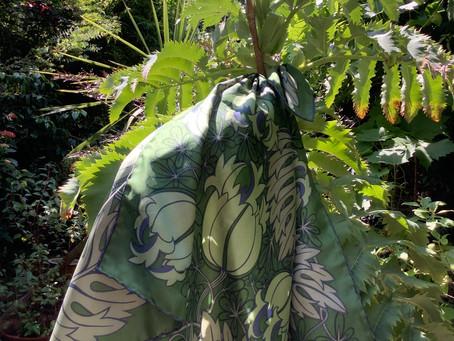 Blog 92 - Honey Flower Tree
