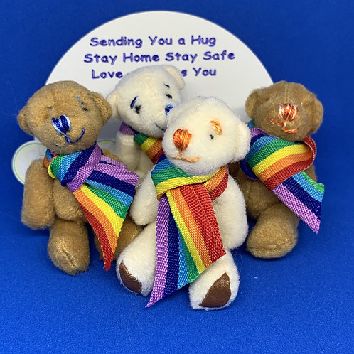 Rainbow Hug Bears