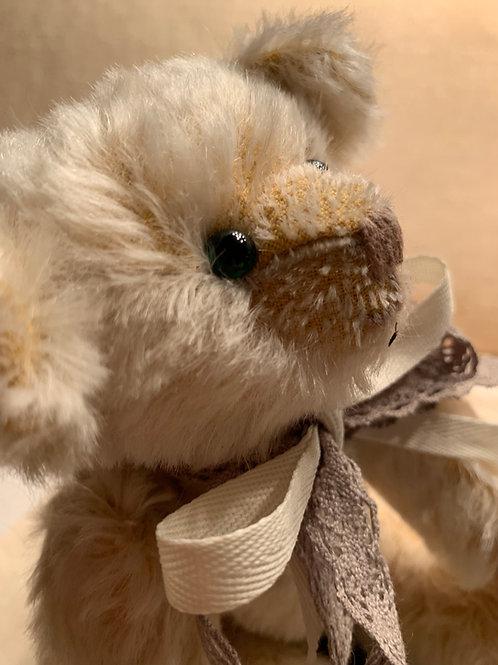 Bear Cub 004 Jilly