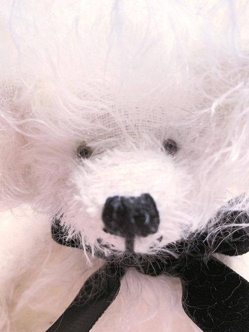 Bear Cub 007 Einstein