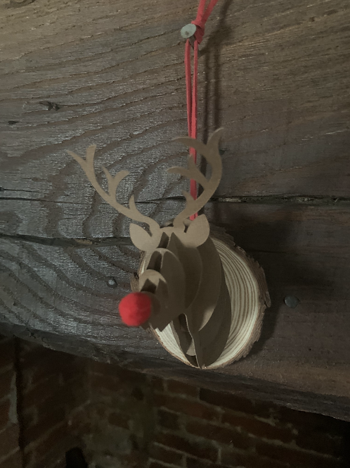 DIY RUDOLPH Decoration
