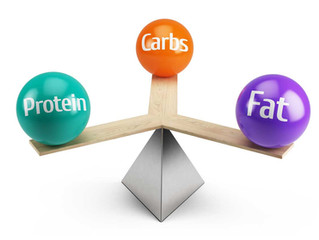 Diet and Fat Loss