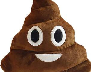 What your poo can tell you about your health.