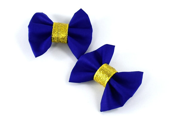 HAIRCLIPS - SET OF TWO PIECES ΑΒ120