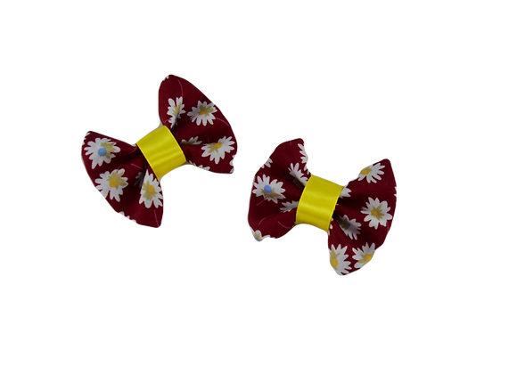 HAIRCLIPS - SET OF TWO PIECES ΑΒ099