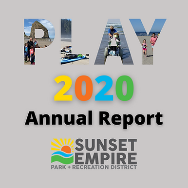 Annual Report 2020 Graphic.png