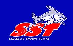SST_Logo_Blue_Back_Print.png