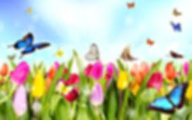 Flowers and butterflies.jpg
