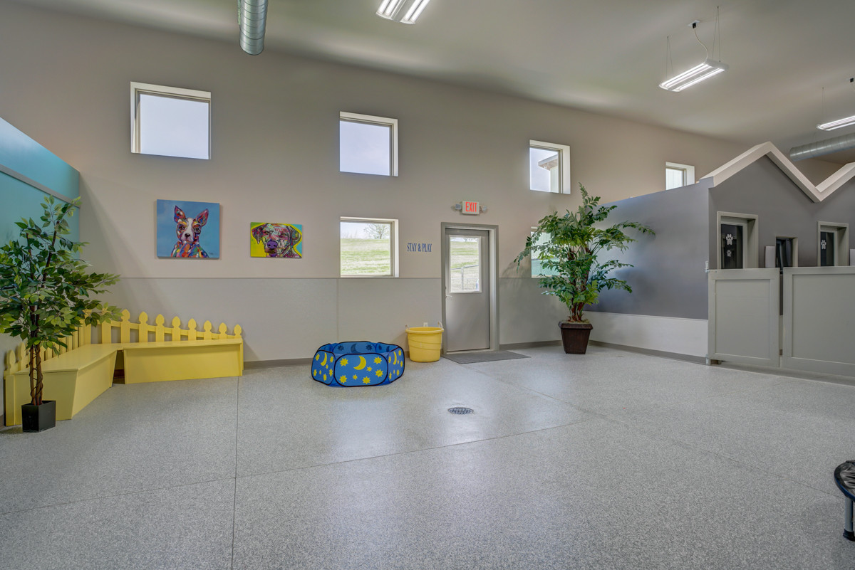 Indoor Bark Park Play Gym