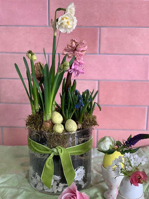 Easter Spring Bulb bowl