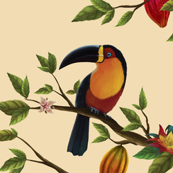 ilustrações-animais