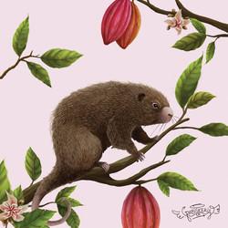 estudio-produziu-ilustração-de-animal