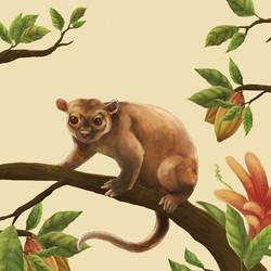 ilustração-animais